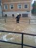 Hochwasser 2013_10